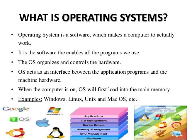 name three types of application software