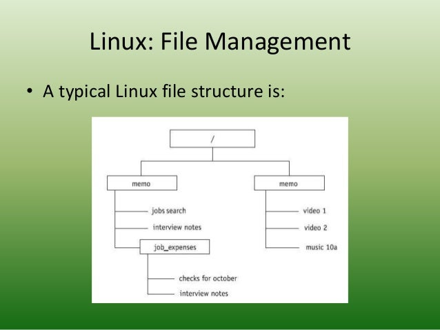 Operating Systems: Linux in Detail