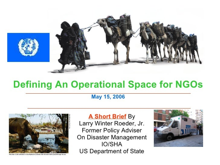 A Short Brief  By Larry Winter Roeder, Jr. Former Policy Adviser On Disaster Management IO/SHA US Department of State Defi...