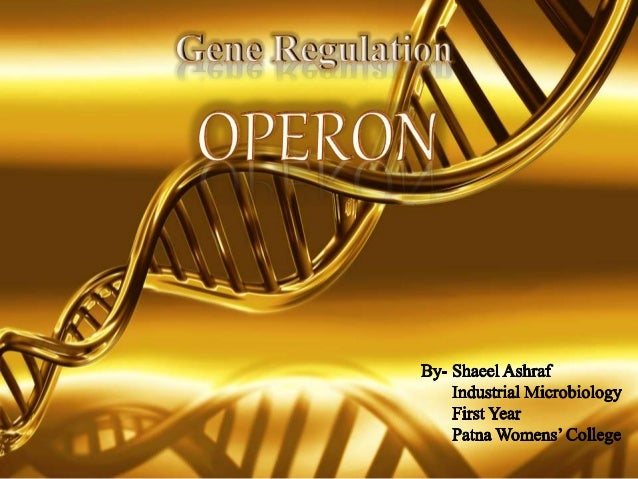 • Introduction • Genes • Gene Regulation • The Lactose Operon • The Tryptophan Operon