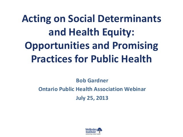 Acting on Social Determinants and Health Equity: Opportunities and Promising Practices for Public Health Bob Gardner Ontar...
