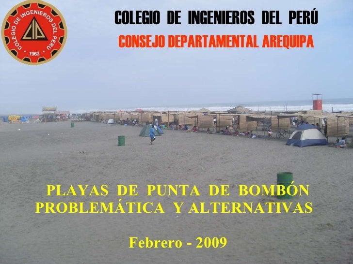 PLAYAS  DE  PUNTA  DE  BOMBÓN PROBLEMÁTICA  Y ALTERNATIVAS    Febrero - 2009 COLEGIO  DE  INGENIEROS  DEL  PERÚ CONSEJO DE...