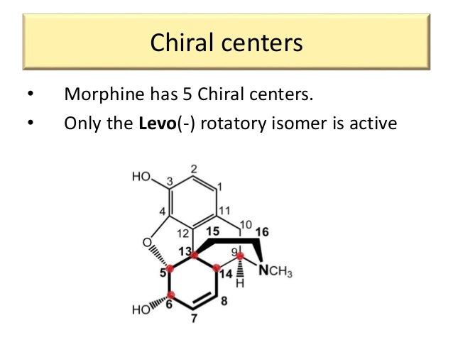 macrolide structure activity relationship of morphine