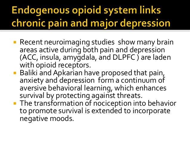 "Mu Opioid Receptor-Mediated Neurotransmission AMY CAU/ NAC/ VP THA CING 4 3 2 1 BP Distributed in pain regions but also ""a..."