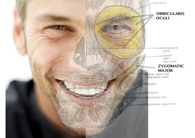 Psicologia delle emozioni - EVENTO OPL InsideOUT