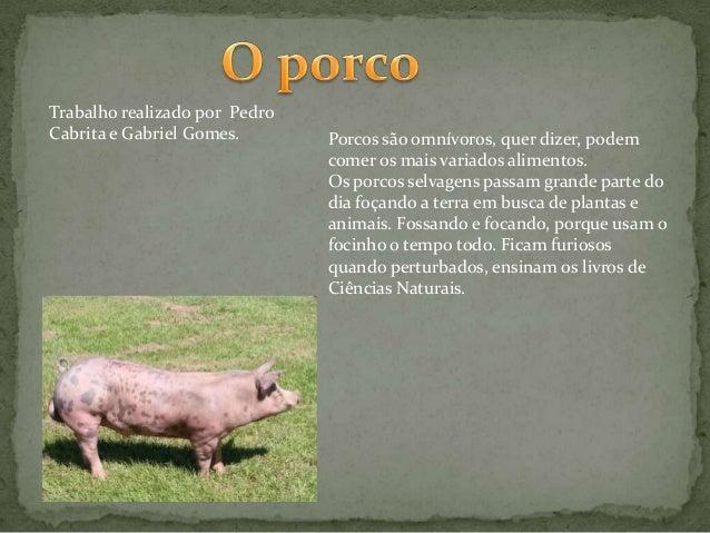 Trabalho realizado por Pedro Cabrita e Gabriel Gomes.  Porcos são omnívoros, quer dizer, podem comer os mais variados alim...