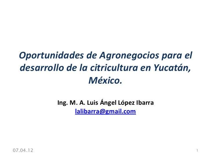 Oportunidades de Agronegocios para el  desarrollo de la citricultura en Yucatán,                  México.           Ing. M...