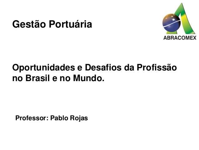 Gestão Portuária Oportunidades e Desafios da Profissão no Brasil e no Mundo. Professor: Pablo Rojas