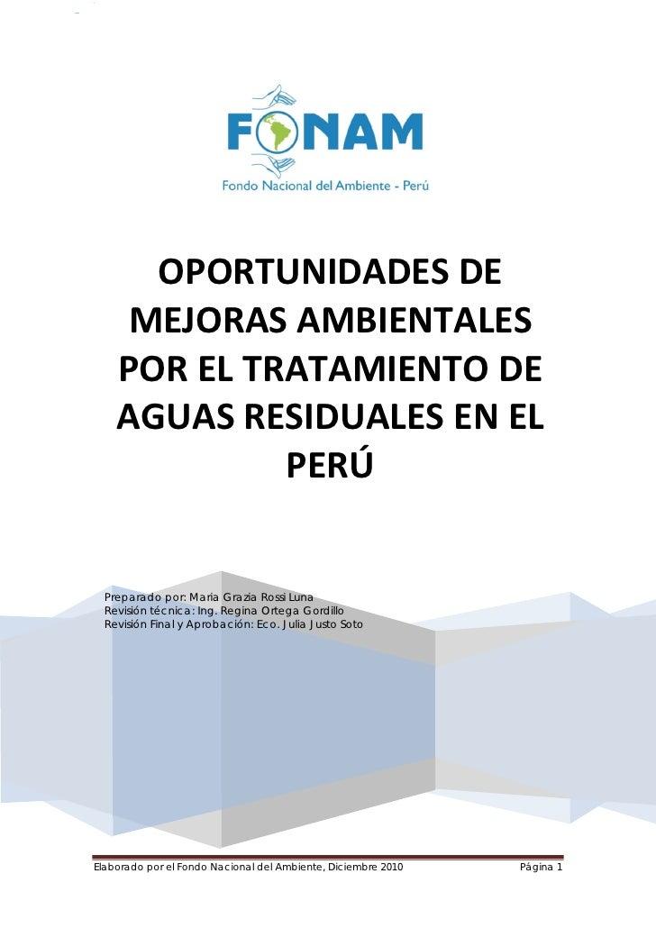 """""""Oportunidades de Mejoras Ambientales por el Tratamiento de                                                               ..."""