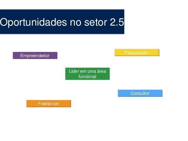 Oportunidades no setor 2.5 Empreendedor Líder em uma área funcional Pesquisador Consultor Freelancer