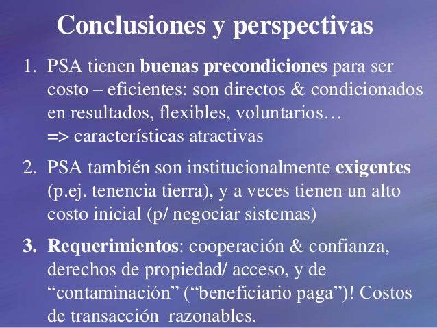 Conclusiones y perspectivas 1. PSA tienen buenas precondiciones para ser costo – eficientes: son directos & condicionados ...
