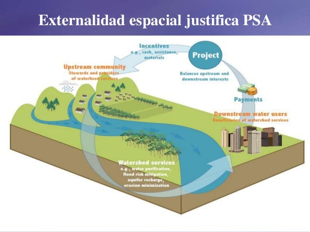 Externalidad espacial justifica PSA