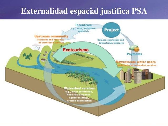 Externalidad espacial justifica PSA Ecotourismo