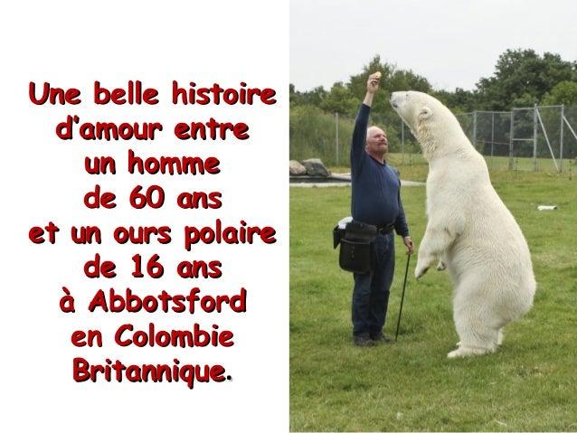 Une belle histoireUne belle histoire d'amour entred'amour entre un hommeun homme de 60 ansde 60 ans et un ours polaireet u...