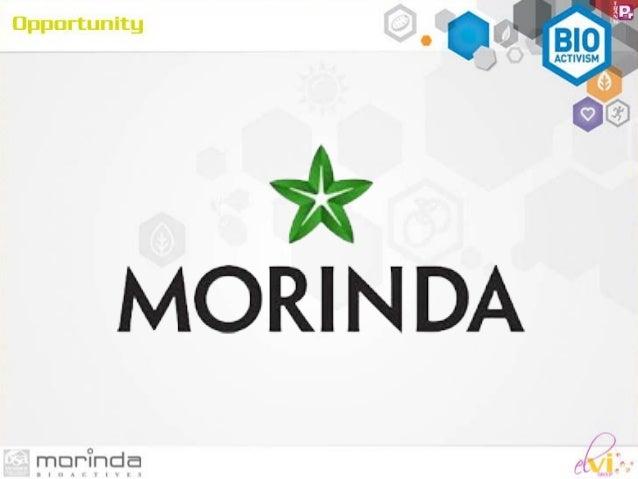 Mô hình kinh doanh Morinda Slide 3