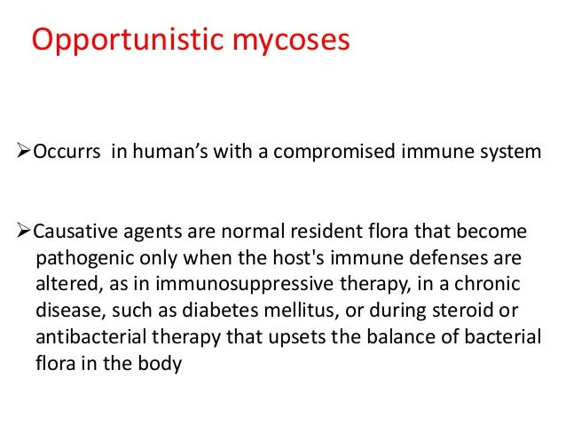 OPPORTUNISTIC MYCOSES PDF DOWNLOAD