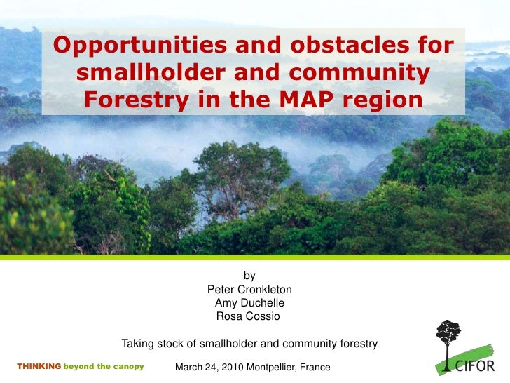 Opportunities and obstacles for smallholder and community Forestry in the MAP region<br />by<br />Peter Cronkleton<br />Am...