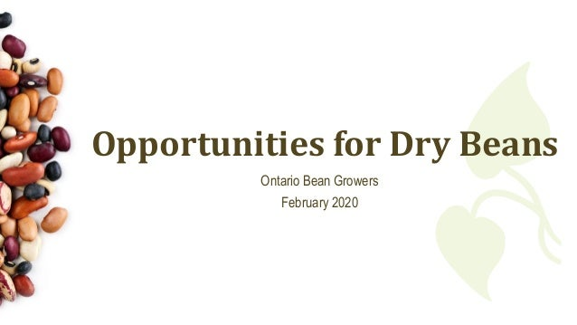 Opportunities for Dry Beans Ontario Bean Growers February 2020