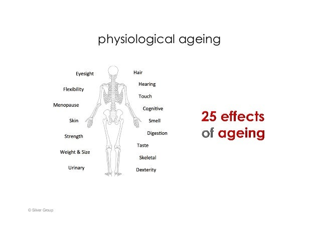 physiological ageing © Silver Group