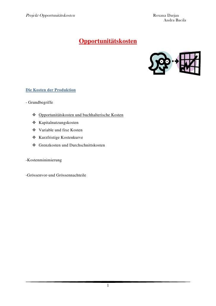 projekt opportunittskosten roxana darjan - Opportunitatskosten Beispiel