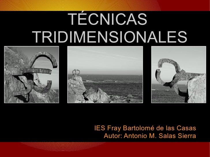 TÉCNICAS TRIDIMENSIONALES IES Fray Bartolomé de las Casas Autor: Antonio M. Salas Sierra