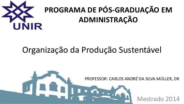 Mestrado 2014 Organização da Produção Sustentável PROGRAMA DE PÓS-GRADUAÇÃO EM ADMINISTRAÇÃO PROFESSOR: CARLOS ANDRÉ DA SI...