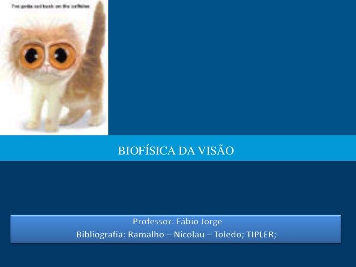 BIOFÍSICA DA VISÃO
