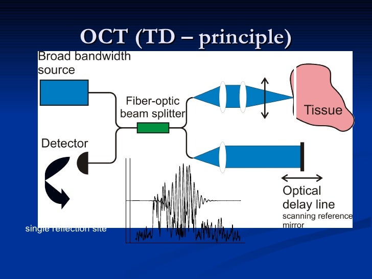 OCT (TD – principle) single reflection site