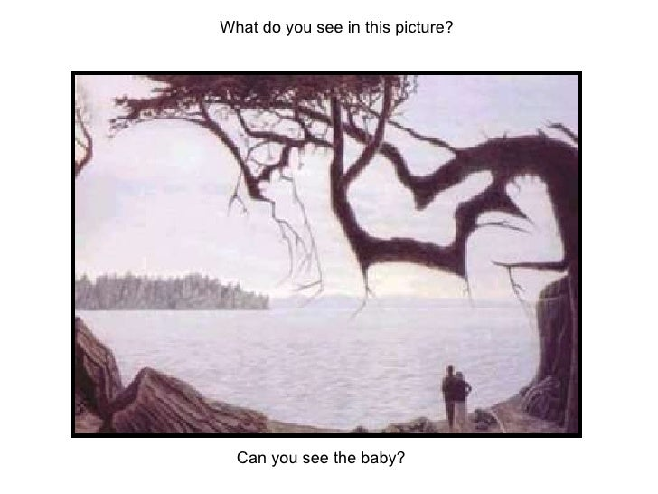 Can You See It Illusions
