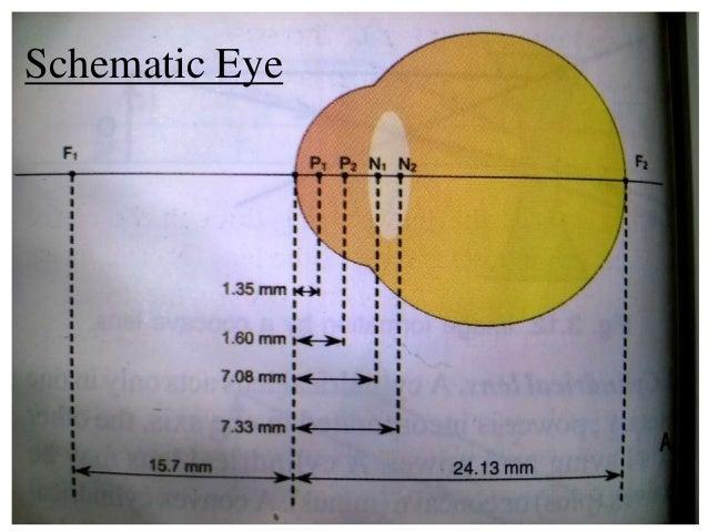 Schematic Eye Optics - House Wiring Diagram Symbols •