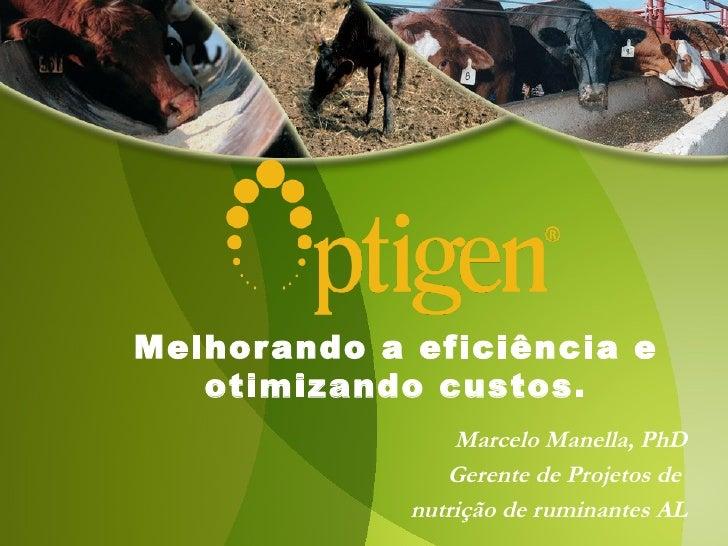 Melhor ando a eficiência e   otimizando custos.                 Marcelo Manella, PhD                Gerente de Projetos de...