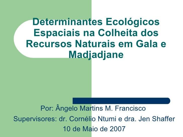 Determinantes Ecológicos Espaciais na Colheita dos Recursos Naturais em Gala e Madjadjane Por :  Â ngelo Martins M. Franci...