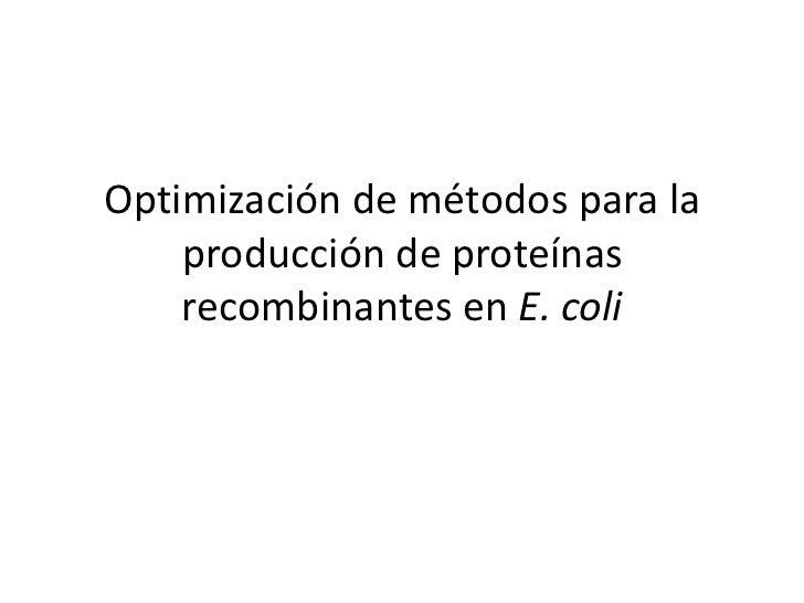 Optimización de métodos para la producción de proteínas recombinantes en E. coli<br />