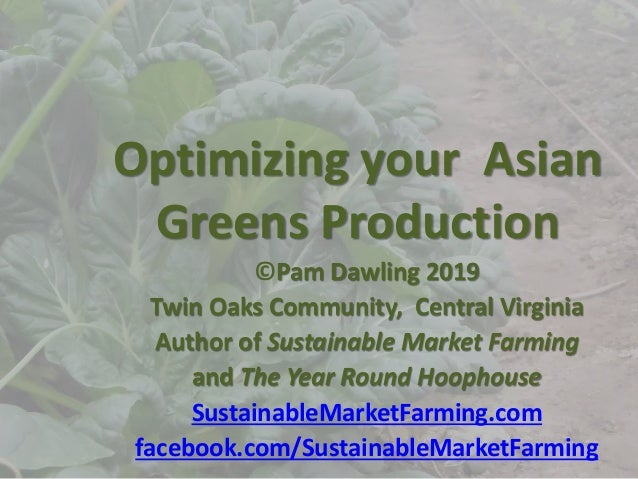 Optimizing your Asian Greens Production ©Pam Dawling 2019 Twin Oaks Community, Central Virginia Author of Sustainable Mark...