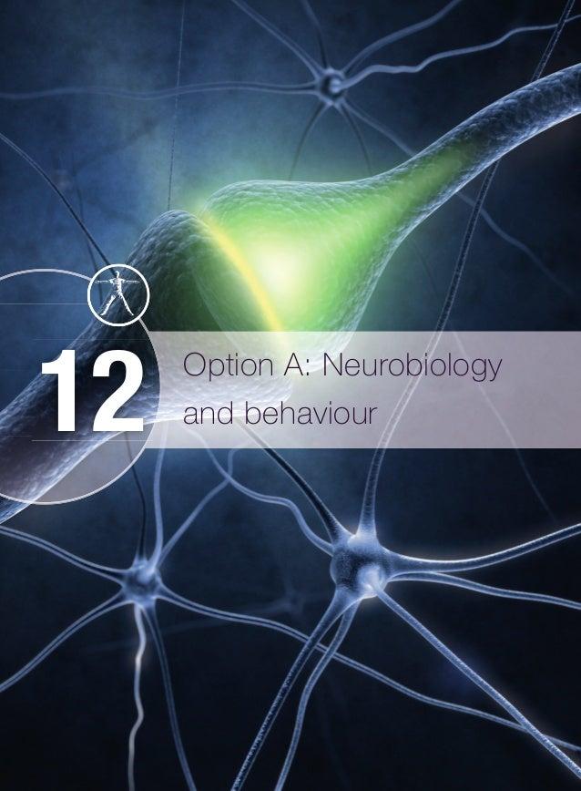 Option A: Neurobiology and behaviour12 M12_BIO_SB_IBDIP_9007_U12.indd 494 26/11/2014 15:31