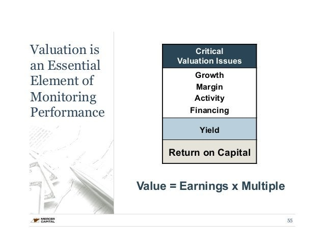 Valuation is  an Essential  Element of  Monitoring  Performance  Critical  Valuation Issues  Growth  Margin  Activity  Fin...