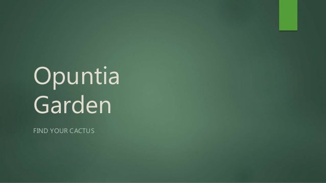 Opuntia Garden FIND YOUR CACTUS