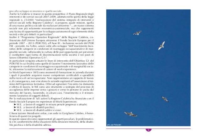 6 7 WORK EXPERIENCE A FAVORE DI SOGGETTI IN MISURA PENALE ATTUALE O PREGRESSA INTRODUZIONE La Regione Calabria, in un'otti...