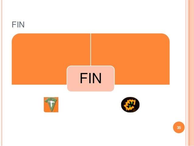 FIN FIN 35