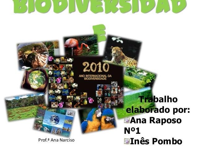 Biodiversidad e  Prof.ª Ana Narciso  Trabalho elaborado por: Ana Raposo Nº1 Inês Pombo