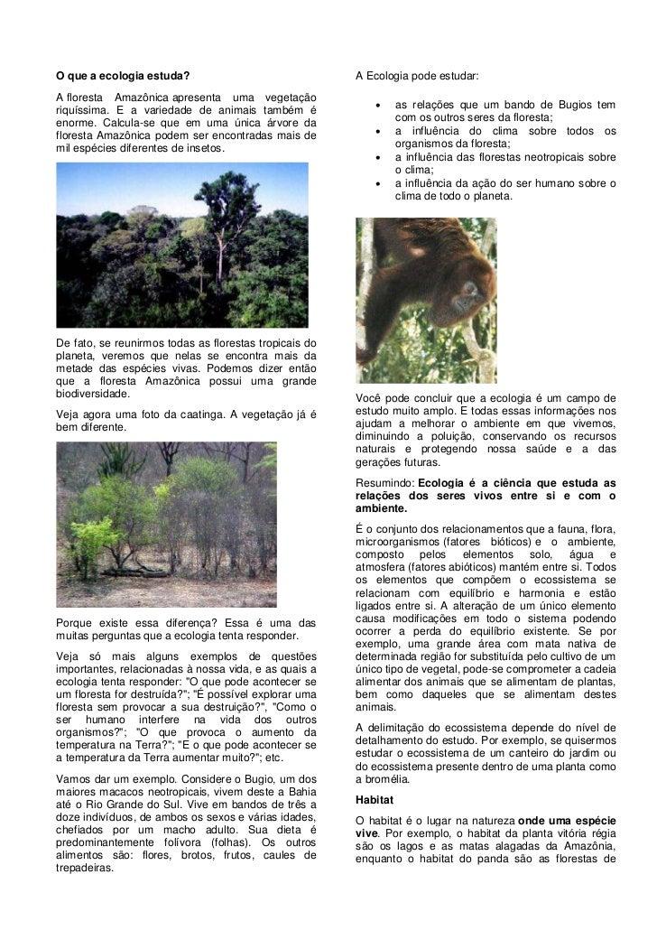 O que a ecologia estuda?                                A Ecologia pode estudar:A floresta Amazônica apresenta uma vegetaç...