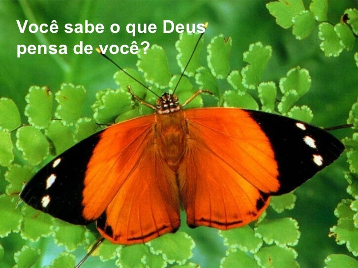Você sabe o que Deus pensa de você?