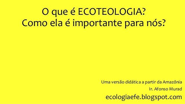 O que é ECOTEOLOGIA? Como ela é importante para nós? Uma versão didática a partir da Amazônia Ir. Afonso Murad ecologiaefe...