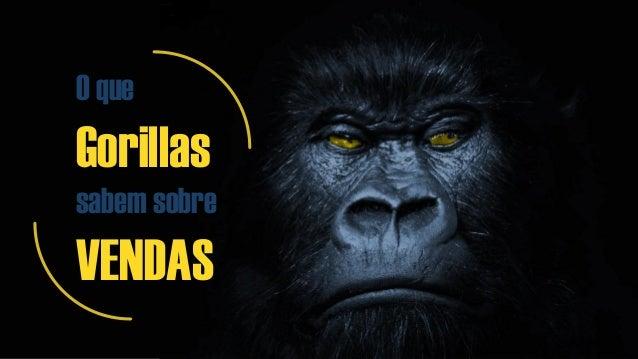O que Gorillas sabem sobre VENDAS