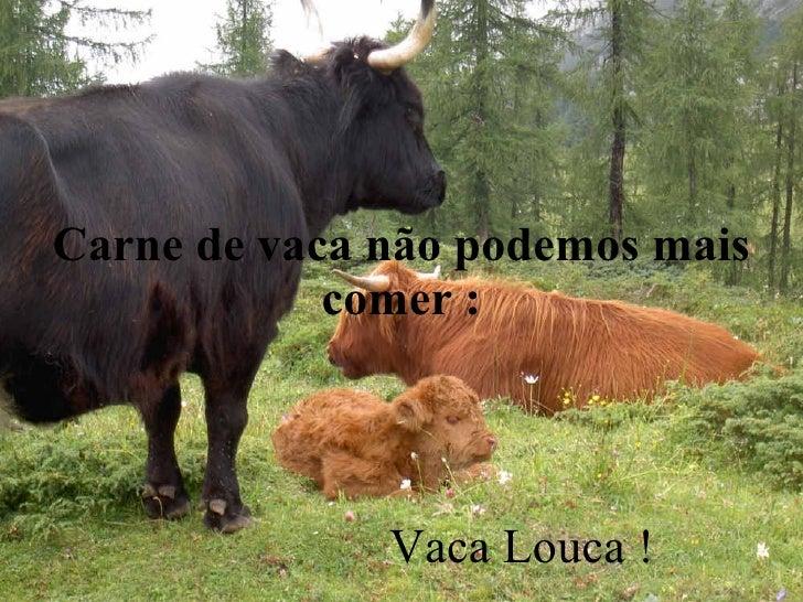 Carne de vaca não podemos mais comer : Vaca Louca !