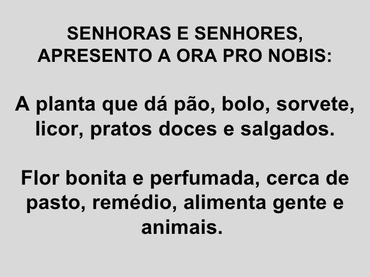 SENHORAS E SENHORES, APRESENTO A ORA PRO NOBIS: A planta que dá pão, bolo, sorvete, licor, pratos doces e salgados. Flor b...