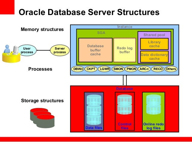 English In Italian: Presentation Of Oracle Database Products For Beginners