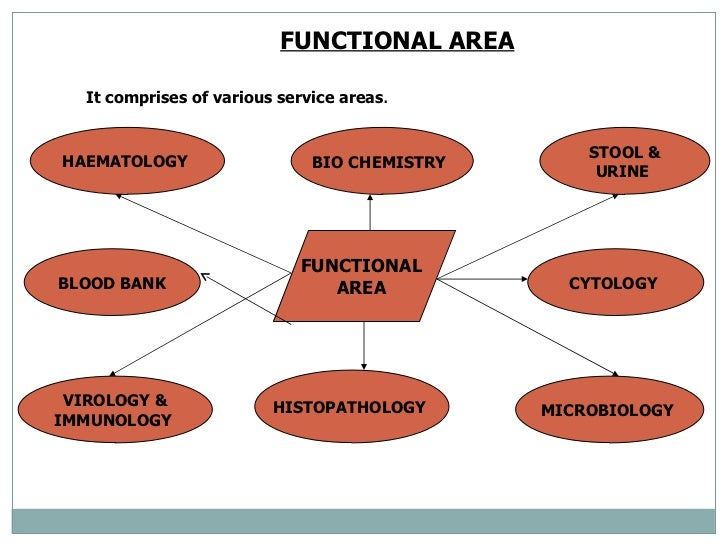 Orag of lab services for Blood bank planning and designing