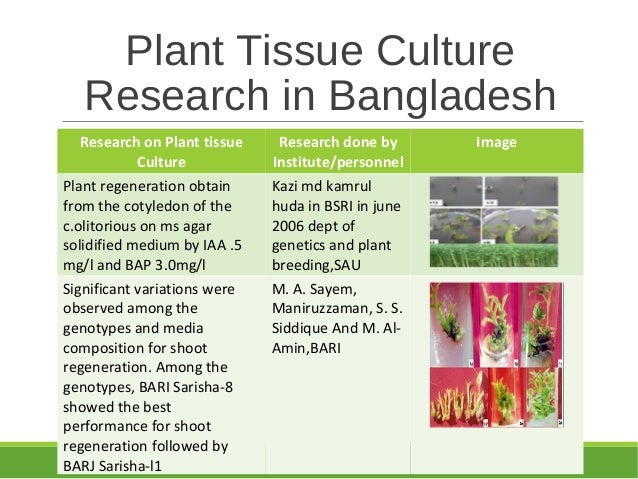 research papers on tissue culture Plant tissue culture research is multi-dimensional while most nurserymen have been introduced to the techniques and advantages of micropropagation, few have ventured to use it as a propagation tool.