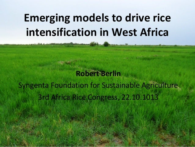 Emerging models to drive rice intensification in West Africa Robert Berlin Syngenta Foundation for Sustainable Agriculture...